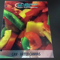 Artex Canvas