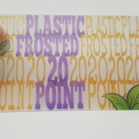 20pt Frosted Plastic Business Card
